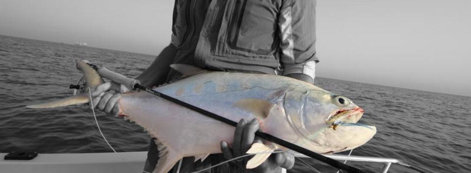 Queenfish Dubai 2015