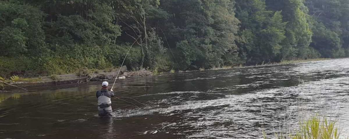 Fly Fishing River Nith