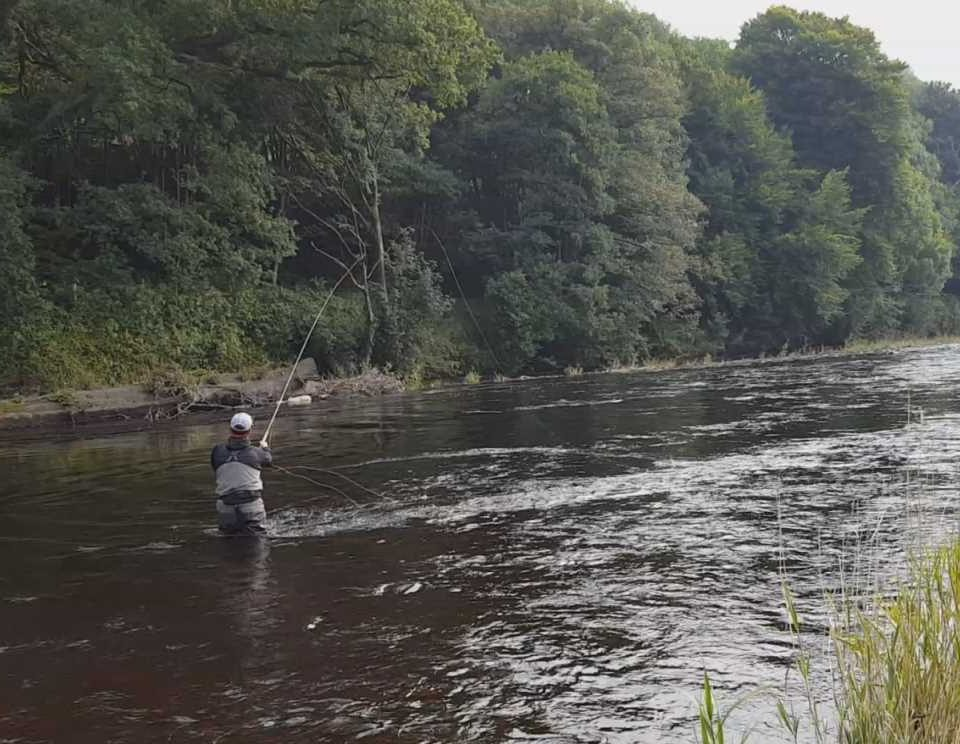 Fly Fishing River Nith