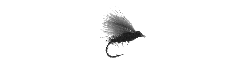 Fly Fishing Logo